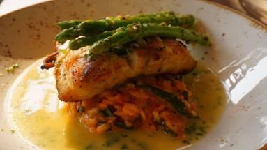 Sea bass over risotto