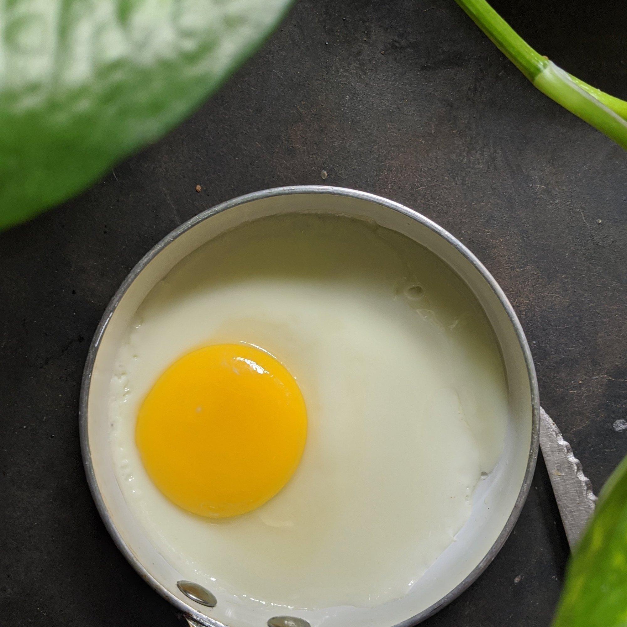 Fry an egg